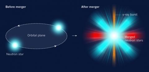 지난 8월 17일 다섯 번째 중력파가 검출됐는데 분석 결과 처음으로 두 중성자별이 합쳐질 때 발생한 것으로 밝혀졌다. 왼쪽은 병합 전 두 중성자별이 나선을 그리며 다가가는 장면을 묘사하고 있고 오른쪽은 병합이 일어난 뒤 사방으로 전자기파를 내놓는 킬로노바의 모습을 그리고 있다. 한편 병합 직후 회전면의 수직 방향으로 강력한 감마선을 수초 동안 내놓는다.  ⓒ 네이처