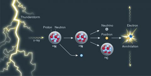 번개가 칠 때 일어나는 핵반응의 하나를 도식화한 그림이다. 번개가 칠 때 생성되는 고에너지 전자에서 나온 고에너지 감마선이 주변 대기의 질소14의 원자핵에 부딪치면 중성자(하늘색 공)가 방출되면서 질소13이 생성된다. 불안정한 질소13은 바로 베타플러스붕괴를 일으켜 뉴트리노와 양전자(노란 공), 탄소13으로 바뀐다. 양전자는 주변의 전자(파란 공)와 부딪쳐 소멸하면서 특정 에너지의 감마선 한 쌍을 내놓는다. ⓒ 네이처