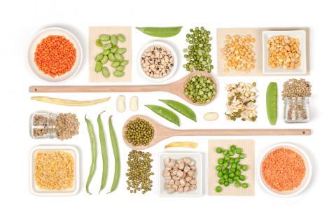 식물성 식사의 장단점을 놓고 논쟁이 가열되고 있는 가운데 100개 과학 학술단체에서 행한 연구결과를 종합한 책자가 발간돼 큰 주목을 받고 있다.  ⓒhealth.harvard.edu