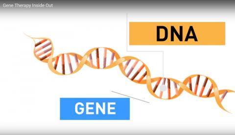 유전자 치료 설명 동영상. Credit: U.S.FDA