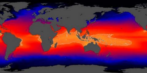엘니뇨 현상을 일으키는 웜풀의 범위가 날로 확산되고 있다 ⓒ NASA