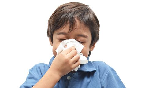 독감 백신의 효능을 놓고 논란이 벌어지고 있는 가운데 최근 백신 효능이 60%에 도달한 것으로 알려지고 있다. 지난 2004~2005년 10%에서 4~6배 상승한 것이다.  ⓒCDC