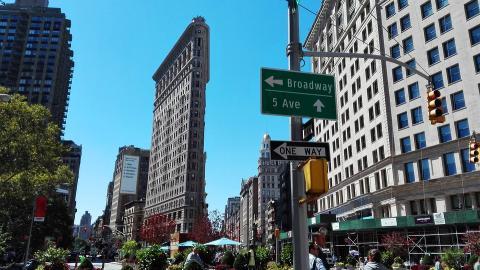 맨해튼 브로드웨이의 가로수 ⓒ Pixabay