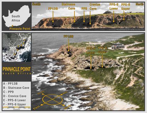 연구팀은 거의 20년 동안 남아공의 피나클 포인트 암혈 주거지를 발굴해 왔다. 7만4000년 전 인도네시아 초거대 화산 토바 폭발로 분출된 미세 유리 파편은 PP 5-6 위치에서 발견됐다.  CREDIT: Image credit Erich Fisher