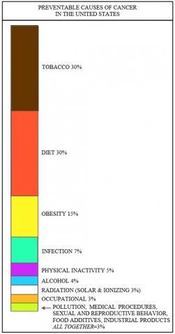 미국에서 예방이 가능한 암 발병 원인의 상대적 수치 도표. 'Cancer prevention' 지 기사에서(2017.11.09) Credit: Wikimedia Commons / Bernstein0275
