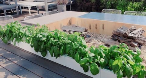 ICT 기술의 발달로 도시에서도 쉽게 농업을 할 수 있게 됐다.(사진=스타트업 엔씽의 스마트가든) ⓒ freshable.net