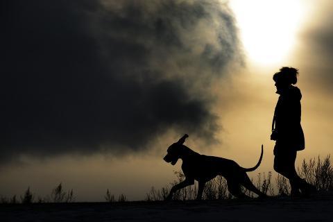 개와 사람 사이의 거리는... ⓒPixabay