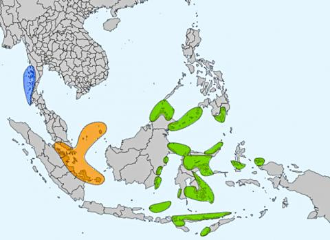 일반적으로 '바다 집시' 혹은 '바다 유목민'으로 불리는 동남아시아 3개 해양 족들의 분포. 녹색은 사마-바자우(Sama-Bajau) 족, 오렌지색은 오랑 라우트(Orang Laut) 족, 청색은 모켄(Moken) 족. Credit: Wikimedia Commons / Obsidian Soul