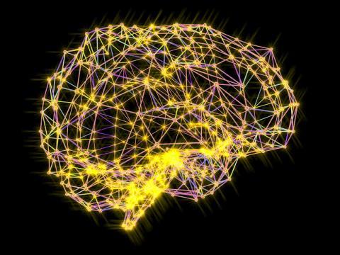 뇌의 신경망은 오랫동안 인공 지능 연구자들에게 영감의 대상이 되었다. Credit: Alfred Pasieka/SPL/Getty