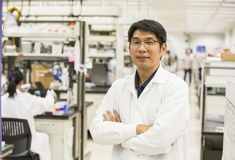 연구를 이끈 미국 애리조나대 화학 및 생화학 석학교수인 하오 얀 박사. 이번 연구에는 하버드대 연구팀이 다수 참여했다.  CREDIT: Biodesign Institute at Arizona State University