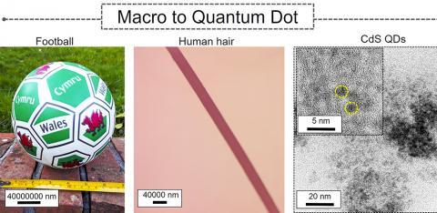 축구공과 머리카락, 이번에 만든 황산카드뮴 나노입자의 크기 비교. CREDIT: S Pitchaimuthu, Swansea University