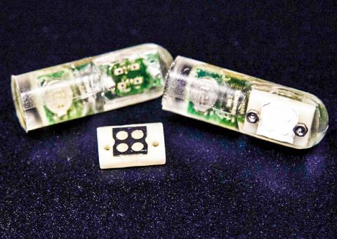 특정 분자를 검출하도록 가공된 박테리아가 맞춤 설계된 센서에 있는 네 개의 '웅덩이'에 놓여있다. 이 센서는 탐지 신호를 무선으로 변환하는 마이크로프로세서에 부착돼 있다.  CREDIT: Melanie Gonick, MIT