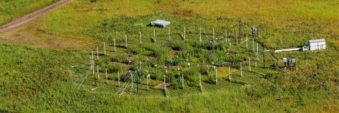 미국 미네소타주에 있는 현장실험실. C3식물 네 종과 C4식물 네 종을 심고 이산화탄소를 공급해 주변보다 180ppm 더 높은 조건을 만들어 식물생장에 미치는 영향을 20년에 걸쳐 관찰했는데 뜻밖의 결과가 나왔다. ⓒ Jacob Miller/Cedar creek ecosystem science reserve