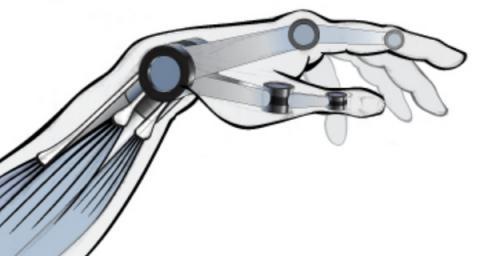 멀지 않은 미래에는 인공 근육의 활용도가 넘쳐날 것으로 예측되고 있다 ⓒ Betaboston.com