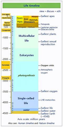 지구 역사에서의 시기별 생명체 출현 Credit: Wikimedia Commons