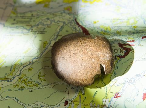 농경에 사용된 구석기시대 돌도끼.  CREDIT: John Eisele/ Colorado State University