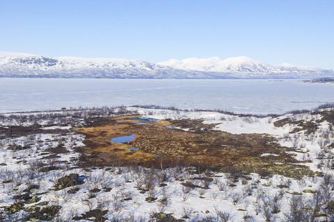 연구기지 가까이에 위치해 있는 영구동토지역의 동결 호수인 토르네트래스크 호수.  CREDIT: Caitlin Singleton