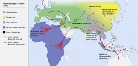 호모 사피엔스가 진화하고 각지로 퍼져나갈 당시인 약 30만~6만년 전 고대 호미닌들의 분포 추정 지도.  CREDIT: Roberts and Stewart. 2018. Defining the 'generalist specialist' niche for Pleistocene Homo sapiens. Nature Human Behaviour. 10.1038/s41562-018-0394-4.