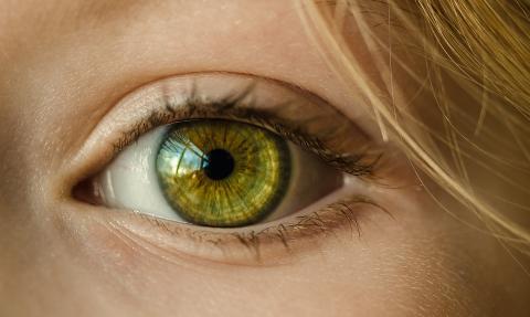 눈의 움직임을 분석하면 성격이 보인다. ⓒ Pixabay