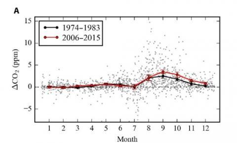 북극 지역 월별 이산화탄소 농도 변화 폭 비교.  2006∼2015년의 계절별 이산화탄소 농도 변화 폭이 1974∼1983년보다 커졌음을 보여준다.