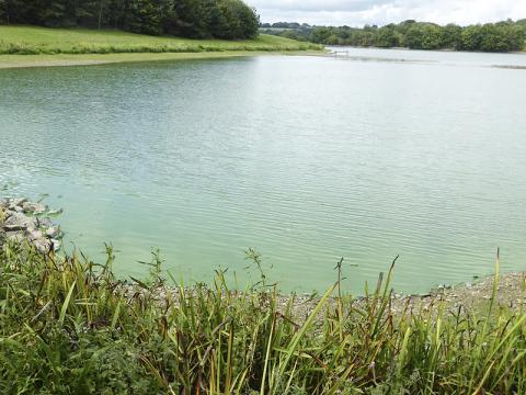 시아노박테리아가 서식하는 물. 프랑스 서부 비트레 시 부근 깡따슈 못. 연구팀은 달 생성 초기 물이 고인 웅덩이에 많은 미생물이 번식했을 것으로 보고 있다.  CREDIT: Wikimedia Commons / Jacques Le Letty