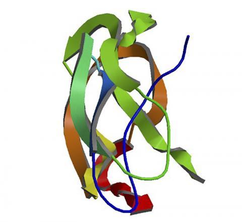 뇌의 아밀로이드 단백질 전구체 구조. ⓒ Wikimedia Commons