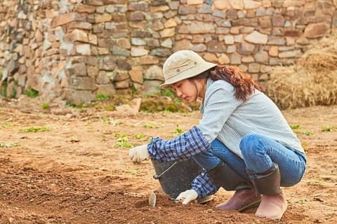 이가라시 다이스케의 만화를 올 2월 영화화한 '리틀 포레스트'의 한 장면. 흙에서 수확한 농작물로 삶의 의미를 찾아가는 젊은이들의 이야기를 담았다.