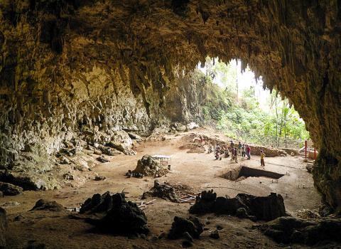 호모 플로레시언시스 화석 뼈가 발견된 인도네시아 플로레스 섬 리앙 부아 동굴 모습. 이 '호빗' 호미닌은 6만~10만년 전에 살았던 것으로 추정되며, 이들의 곁에서 발굴된 석기들은 5만~19만년 전까지 거슬러 올라간다.  CREDIT : Wikimedia Commons /Rosino