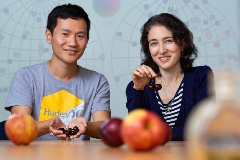 연구를 수행한 타티야나 샤피 교수(오른쪽)와 양솅 주(Yuansheng Zhou) 연구원. CREDIT: Salk Institute