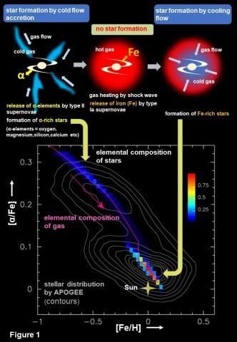 우리 은하의 탄생과정. ⓒ Tohoku University