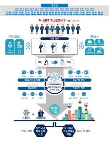 청년 TLO 사업 흐름도 ⓒ 과학기술정보통신부
