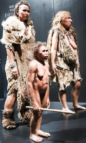 고대인을 복원한 모습. 왼쪽부터 2만600년 전의 16~18세 된 호모 사피엔스 여성, 6만년 전의 30대 호모 플로레시언시스 여성, 3만6300년 전 20대의 네안데르탈인 여성. 프랑스 리옹 콩플뤼안스 박물관 소장.  CREDIT : Wikimedia Commons / Ismoon
