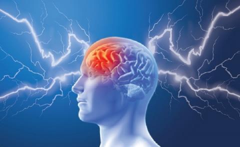 나트륨 농도 조절에 관여하는 뇌의 기능에 문제가 생겨 드라베 증후군이 발생하는 것으로 추정하고 있다 ⓒ Coherent Chronicle