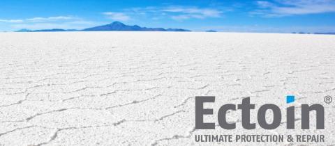 엑토인은 극한의 환경으로 이루어져 있는 이집트의 한 소금호수에서 발견됐다 ⓒ bitop.de
