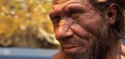 현생인류가 네안데르탈인 등과 경쟁에서 이긴 원인을  '제너럴리스트‧스페셜리스트' 행위적인 측면에서 밝히려는 생태학적인 연구 결과가 발표돼 주목을 받고 있다.   ⓒNatural History Museum