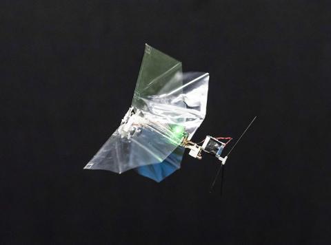 전진 비행을 하는 델플라이 모습.  Photos: MAVLab TU Delft