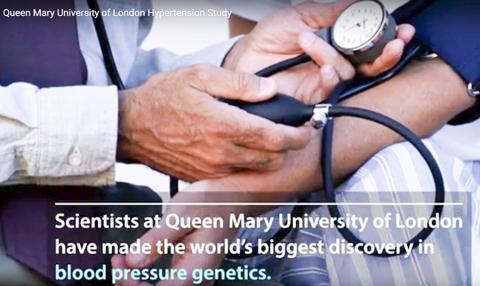 혈압 관련 세계 최대의 유전 연구에서 영국 연구팀은 혈압에 영향을 미치는 500개 이상의 새로운 유전 영역을 발견했다.  CREDIT: Queen Mary University of London