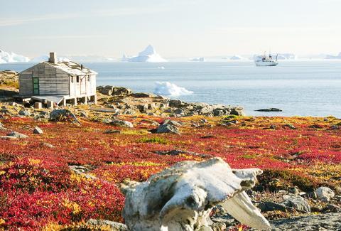 북극 툰드라지대인 동그린란드 스코어스비 순트의 시드캡(Sydkap) 지역 모습.  CREDIT: Wikimedia Commons / Hannes Grobe, AWI