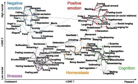 2차원 지도로 표시한 느낌공간이다. 가로축은 정서적인 정도(유쾌-불쾌)이고 세로축은 마음의 비중(낮음-높음)이다. 연구자들은 100가지 핵심 느낌 대다수를 다섯 가지 범주(긍정적인 감정, 부정적인 감정, 인지적 과정, 아픈 상태, 항상성)로 나눌 수 있다고 주장했다. ⓒ 미국립과학원회보
