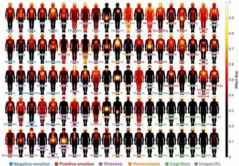 100가지 핵심 느낌의 신체느낌지도. 색이 밝을수록 해당 느낌과 관련이 큰 신체부위라는 뜻이다. ⓒ 미국립과학원회보