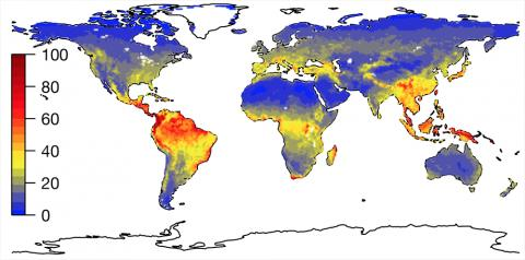 백분율로 나타낸 토종 식물의 풍부성.  데이터 출처 : http://ecotope.org/anthromes/biodiversity/ plants / data