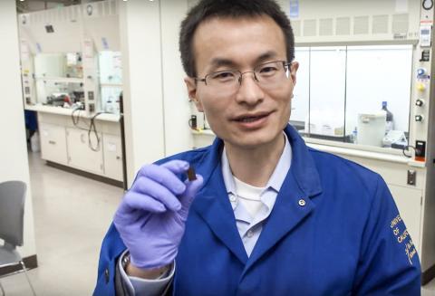 반도체와 미생물을 연결한 하이브리드 시스템을 연구하고 있는 UC버클리대 화학과 페이동 양 교수. CREDIT: MacArther Foundation