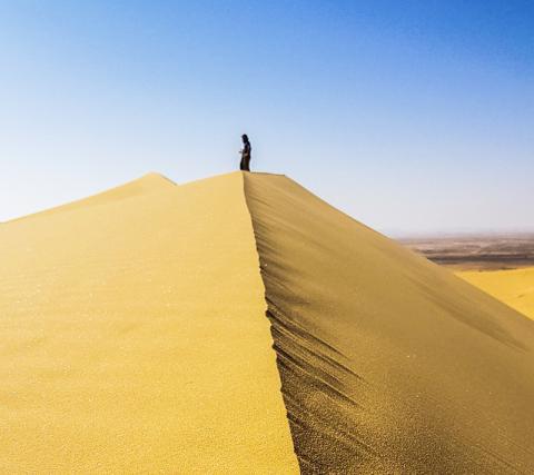 발굴지인 '티스 알 가다'가 위치한 사우디 아라비아의 네푸드 사막 모래언덕. CREDIT: Palaeodeserts Project (Klint Janulis)