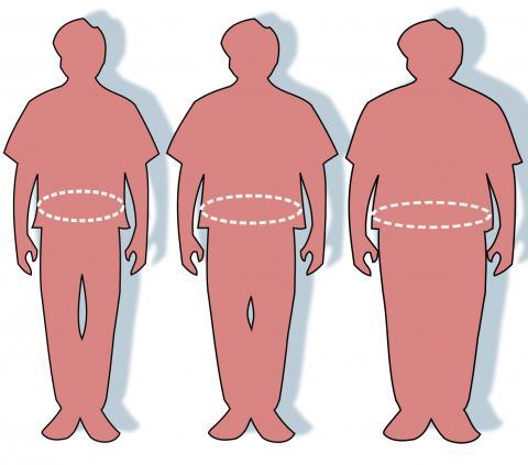 전체 암의 40%가 비만과 관계가 있는 것으로 나타나 '비만 전염병'은 전세계에서 경계 대상이 되고 있다. 오른쪽에서부터 비만과 과체중 및 정상 체중 그림. 비만을 예방하려면 먼저 몸에 흡수되는 에너지 양을 줄이고, 흡수한 에너지는 운동을 통해 소진시켜야 한다.  Credit: Wikimedia Commons / Victovoi