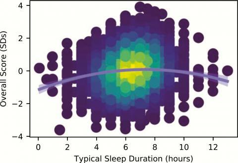 7~8 시간대에서 가장 두뇌 활동이 활발하다.  ⓒ 웨스턴 온타리오 대학