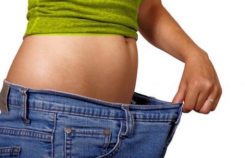 생쥐 비만 줄여주는 단백질이 사람 비만도 줄여줄까? ⓒ Pixabay