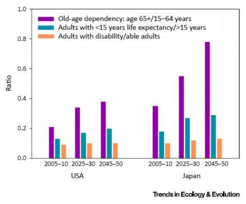 초고령사회에 대한 지나친 우려는 15~64세 인구에 대한 65세 인구의 비율이 급등하는 구조적인 변화만을 고려하기 때문이다(보라색). 그러나 기대수명이 15년 이상인 인구에 대한 15년 미만인 인구의 비율(파란색)이나 독립적인 성인에 대한 도움이 필요한 성인의 비율(주황색)을 보면 별 차이가 없다. 왼쪽은 미국 오른쪽은 일본이다.  ⓒ 생태학 및 진화 경향
