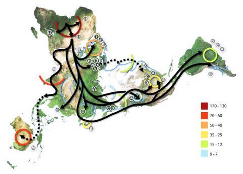 모계 미토콘드리아 DNA 분기를 기반으로 작성한 인류의 이주모델 지도. CREDIT : Wikimedia Commons