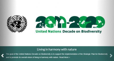 UN(국제연합)은 2002년부터 '세계 생물 다양성의 날'을 지정해 매년 미래 세대를 위해 생물 다양성을 지키고 인간의 책임을 성찰하기 위해 노력하고 있다. ⓒhttps://www.cbd.int/2011-2020/