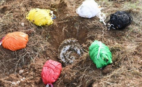 색깔있는 털뭉치로 땅벌의 공격 성향을 조사한 실험 ⓒ 국립공원연구원